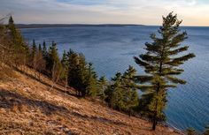 5 things to do in traverse city