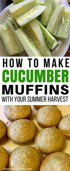 If you have fresh cucumbers piling up, try something new! These cucumber muffins are the perfect way to preserve your cucumber harvest. They freeze well and make an easy snack or breakfast and are perfect for packing in lunch boxes for school or work! Cucumber Ideas, Cucumber Snack, Cucumber Appetizers, Cucumber Canning, Cucumber Recipes, Low Sugar Recipes, No Sugar Foods, Jam Recipes, Muffin Recipes