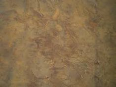 franciscojavierreyescaer Picture result for concrete floor discoloration ideas beige # fashionaccess Concrete Bedroom, Bedroom Flooring, Skin Grafting, Tree Base, Types Of Acne, What Is The Secret, Tree Shapes, Epoxy Floor