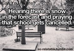 73 Best Snow Humor Images Funny Images Fanny Pics Hilarious