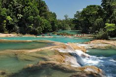 Agua Azul Waterfall (Blue Water in English), a cascade that creates multiple waterfalls and crystalline clear turquoise pools on its miles-long journey down the mountain.