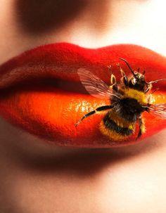 Rajeunissant, adoucissant, antioxydant, vitalisant… le miel cumule les bienfaits pour notre peau. ELLE : Enquête sur cet ingrédient magique.