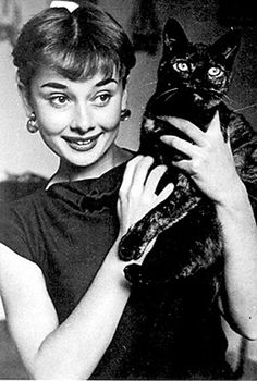 Famous People With Cats Sean Connery meryl streep John Lennon famous people and cats Audrey Hepburn anthony hopkins