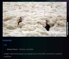 Swimming in mashed potatoes #lol #laughtard #lmao #funnypics #funnypictures #humor  #mashedpotatoes #swimming