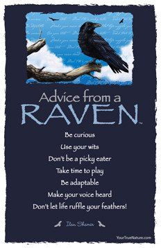 Advice from a Raven- Postcard- Your True Nature