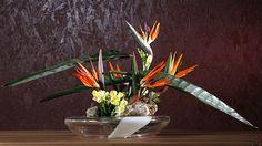 Έχω το βάζο γεμάτο με τα πιο όμορφα λουλούδια... όλα τ' άλλα είναι ο κήπος μου.... Στο βάζο ευωδιάζουν την αγάπη μου!!!  Εύχομαι Καλά Χριστούγεννα σε όλους, υγεία πάνω απ' όλα και αγάπη.