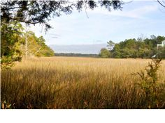 This marshfront lot is incredible! you feel like you are on your own private island. #mtpsc