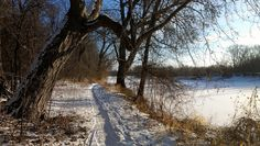 MN Bike Trail Navigator: Bike Trail Picture of the Day - 12/31/12