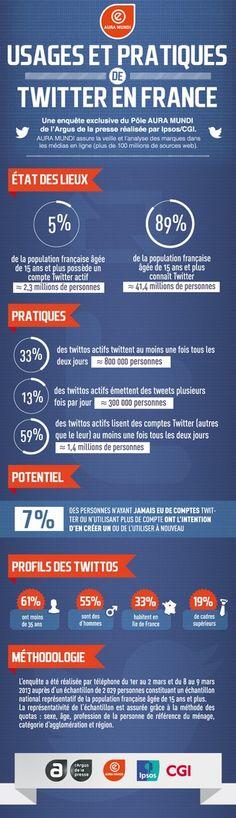 Infographie sur les usages et pratiques de Twitter en Francei
