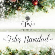 Que la alegría de la navidad ilumine sus hogares y el de todos sus seres queridos ¡Felices fiestas! #FelizNavidad #Effigia