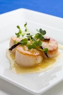 Find out all about delicious scallops at #pchtips!