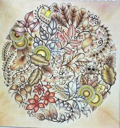 Johanna basford / enchanted forest coloring