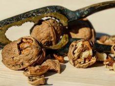 Ořechové skořápky během podzimu vyvážíte zlatem. Po přečtení tohoto článku už nevyhodíte ani jedinou!