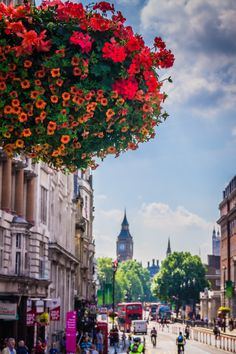 Floral London,  England   by Jose Vazquez on 500px