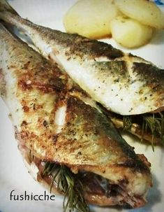 Grilled Horse Mackerel with Rosemary and Garlic Recipe - Yummy this dish is very delicous. Let's make Grilled Horse Mackerel with Rosemary and Garlic in your home! Side Dish Recipes, Fish Recipes, Seafood Recipes, Cooking Recipes, Healthy Recipes, Spicy Recipes, Salmon Recipes, Pisces, Steak