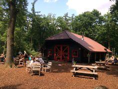 Theehuis 't Hooge Erf - Een heerlijk theehuis om lekker te lunchen midden in het bos bij Lage Vuursche! #natuur #lunch #kinderen