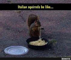 Ein echter Italiener weiß was sich gehört.. | Lustige Bilder, Sprüche, Witze, echt lustig