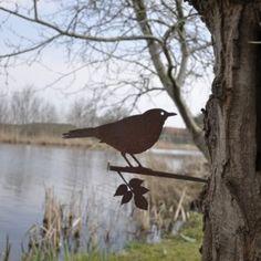 merel metalbird vogelsilhouet (800x531)