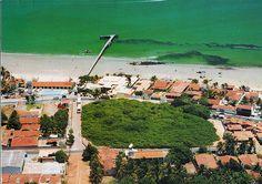 Maior Cajueiro - Praia de Pirangí - RN - Brasil