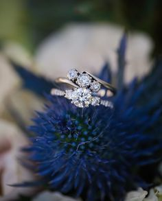 14 Wedding Rings to Melt the Coldest Hearts hit our blog this morning! I just LOVE LOVE LOVE wedding rings so let me know which is your favorite on our blog today! . . . . . #strousephotography #strousephoto #weddingrings #bling #heputaringonit #richmondwedding #rvaweddings #rvawedding #richmondweddings #weddingband #engagementring