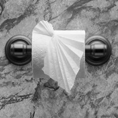 "PLEATED LEAF ♦ Instructions in ""Toilet Paper Origami On a Roll"" by Linda Wright ♦ http://www.amazon.com/dp/0980092337/ Decorate your bathroom with a pretty toilet paper origami leaf."