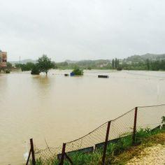DAY AFTER DISASTER  #BosniaFloods#SerbiaFloods#CroatiaFloods http://vimeo.com/96696699