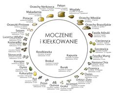 moczenie i kielkowanie nasion Clean Eating, Healthy Eating, Physical Activities, Good To Know, Food Inspiration, Natural Health, Cooking Tips, Life Hacks, Recipies