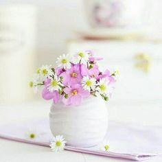 Shabby Flowers, Tulips Flowers, Real Flowers, Flower Vases, Beautiful Flowers, Flower Background Wallpaper, Flower Backgrounds, Beautiful Flower Arrangements, Floral Arrangements