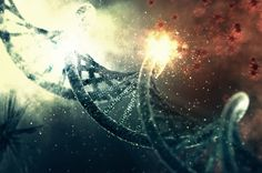 Attack on DNA