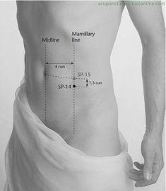 SP-14 Abdomen Knot FUJIE - Acupuncture Points -1