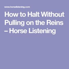 How to Halt Without Pulling on the Reins – Horse Listening