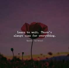 Learn to wait. Theres always time for everything. via (http://ift.tt/2A8DAqh)