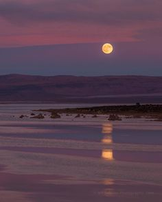 Moon rise at Mono Lake in Sierra County, California, USA Nature Aesthetic, Aesthetic Photo, Aesthetic Pictures, Photo Wall Collage, Picture Wall, Whatsapp Logo, You Are My Moon, All The Bright Places, Pretty Sky