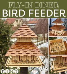 Please your feathered friends — make them a diner!