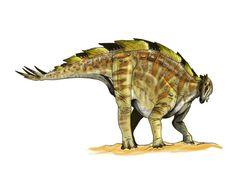 Wuerhosaurus   wuerhosaurus_by_fafnirx-d5lkyy5.jpg