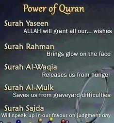 Islam Quran, Quran Surah, Allah Islam, Islam Beliefs, Duaa Islam, Hadith Quotes, Allah Quotes, Muslim Quotes, Texts