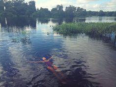 Brazil Brasil Brassil__ todo sossego do pantanal