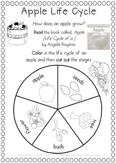 Fall Writing Worksheets {about Fall, Word Work and Reading Response}. Grade one$