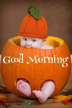 A list of fun & spooky Halloween photography ideas to turn your ordinary Halloween photos into frightfully creative ones! Baby Pumpkin Pictures, Baby In Pumpkin, Baby Pictures, Pumpkin Pics, Good Morning Thursday, Good Morning Good Night, Good Morning Wishes, Happy Thursday, Morning Morning