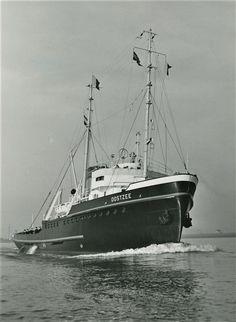 Sea deep moratorium trawling on bottom