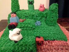 "Sweet Cheeks ""Minecraft World"" Cake"