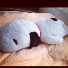 Snoopy, play dead!