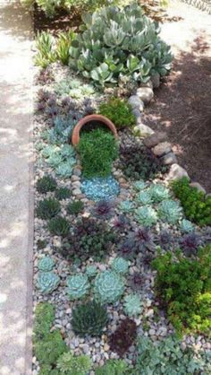 32 Stunning Low-Water Landscaping Ideas for Your Garden backyard landscaping landscaping garden landscaping Low Water Landscaping, Garden Landscaping, Landscaping Software, Landscaping Tips, Succulent Landscaping, Luxury Landscaping, Landscaping Melbourne, Landscaping Company, Garden Paths