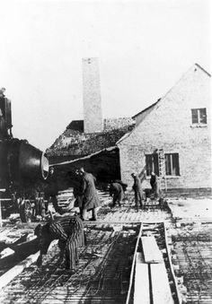 Auschwitz, Poland, Inmates working at the construction of the death camp.