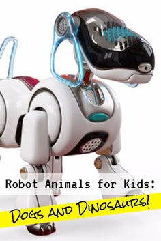 Here are several of this year's top-rated and most popular robot toys for kids - the two top favorites, dogs and dinosaurs!