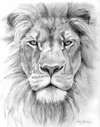 lion-face-sketch-ivan-patino jpg 760 900 pixels l Wolf Tattoos, Lion Head Tattoos, Animal Tattoos, Small Lion Tattoo, Pencil Drawing Images, Realistic Pencil Drawings, Animal Pencil Drawings, Drawing Sketches, Drawing Ideas