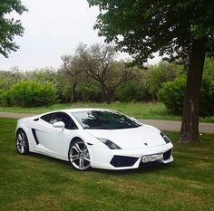 Lamborghini Gallardo #ferrari #cadillac #Chevrolet #ford #lamborghini #pagani #porsche #bmwgram #bmw #mercedesbenz #marrusia #bugatti #koenigsegg #maserati #volkswagen #nissan #dodge #audi #mitsubishi #jaguar #mazda #megasport #sportcars_exotic #jeep #viper #lykanhypersport #subaru #motorhead by sportcars_exotic