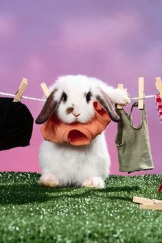 I have nothing to wear for Easter! lol