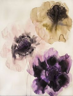 3 anemones 1  watercolor and ink on paper 29¨x42¨