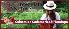 INTERVISTA VANITOSA #8: COLORES DE SUDAMERICA + FLAMINGO